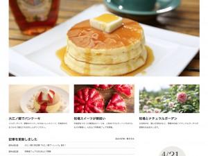 大江ノ郷リゾートサイト